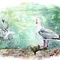 Seagulls In Porthleven by Miki De Goodaboom