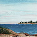 Seagulls Over Lighthouse Cove by Tracy Bowman