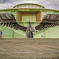 Seahorse by Steve Stanger