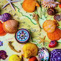 Seashells On Old California Map by Garry Gay
