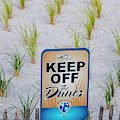 Seaside Sand Dunes Sign by Susan Candelario