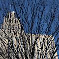 Seasonal View C by Patrick M Lynch