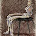 Seated Skeleton Legs And Hips In Pastel  by Irina Sztukowski