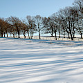 Shadows In The Snow by Victor Lord Denovan