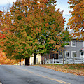 Shaker Road In Canterbury New Hampshire by Jeff Folger