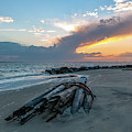 Shallow Waters - Sullivan's Island by Dale Powell