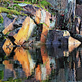 Shawanaga Rock And Reflections X by Debbie Oppermann