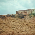 Shed On The Hill Iceland by Joan Carroll