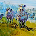 Sheep And Lambs In Bright Sunshine by Mike Jory