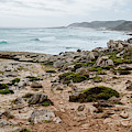 Shoreline Near The Cape Of Good Hope. by Rob Huntley