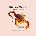 Sierra Newt - Black Text by Lisa Redfern