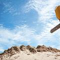 Signpost Through The Dunes by Helen Northcott