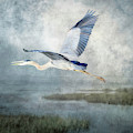 Silently Over The Marsh by Donna Kennedy