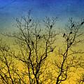 Silhouette Birds Sequel by Christina Rollo