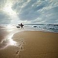 Silhouette Of Surfer With Dog Walking by Ed Freeman