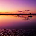 Siltcoos Dawn by Robert Potts