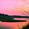 Sitka Sedge Sunset by Chriss Pagani
