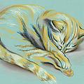 Sleeping Tabby Kitten by MM Anderson