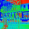 Slightly North Of Broad by Jenny Revitz Soper