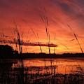 Slough Sunrise by James Peterson