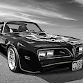 Smokey And The Bandit Trans Am In Mono by Gill Billington
