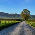 Smokey Mountain Road To The Hills Dsc_0380 by Michael Thomas