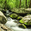 Smoky Mountains In Spring by Mel Steinhauer