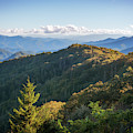 Smoky Mountains by Sharon Seaward