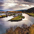 Snake River Swan Valley by Leland D Howard