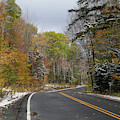 Snoliage In The White Mountain National Forest by Jeff Folger