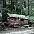 Snow Cabin by Bill Posner