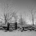 Snow Covered Gate And Wall by Helen Northcott
