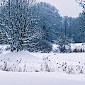 Snow Covered Landscape Park by Sun Travels