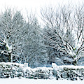 Snow Covered Wall I by Helen Northcott