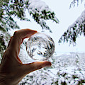 Snow Globe by Peggy Collins