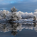 Snow On Lewis And Clark River by Robert Potts