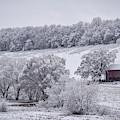 Snow Scene by Michelle Wittensoldner