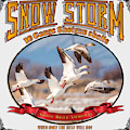 Snow Storm 10 Gauge Shotgun Shells by TL Mair