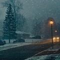 My Street by Jack Wilson