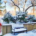 Snowy Bench by Mary Capriole