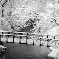 Snowy Bridge On Mill Creek by Jeff Phillippi
