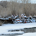 Snowy Graveyard by Tracie Fernandez