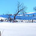 Snowy Palouse by David Patterson