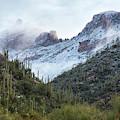 Snowy Sabino Canyon Near Tucson Az by Dave Dilli