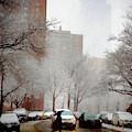 Snowy Street Scene by Alison Frank