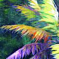 Soft Palm by John Clark
