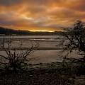 Softsunrise Morning by Bill Posner