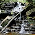 Somersby Lower Falls by Nicholas Blackwell