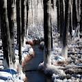 Soul Of Winter by Karen Wiles
