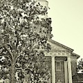 South Carolina State Hospital Chapel Of Hope Black And White by Lisa Wooten
